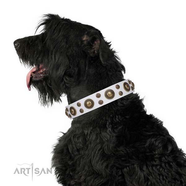 Daily walking decorated dog collar of high quality material