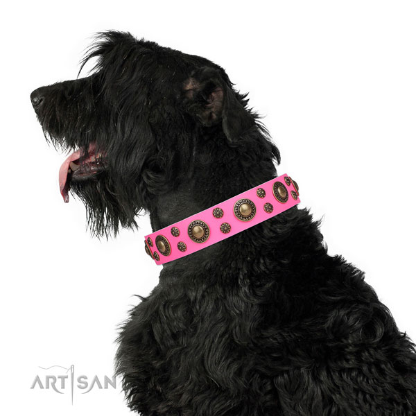 Basic training decorated dog collar of finest quality material