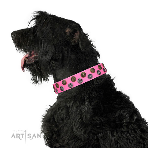 Everyday use adorned dog collar of finest quality material