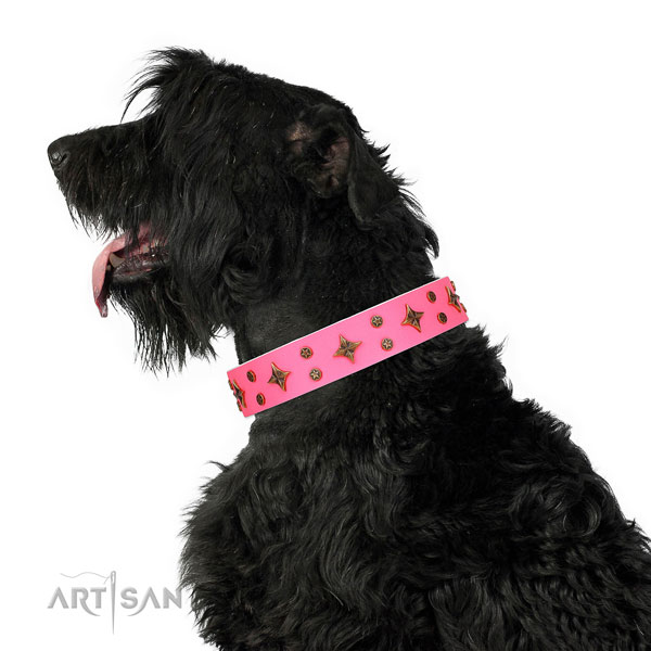 Easy wearing embellished dog collar of strong material