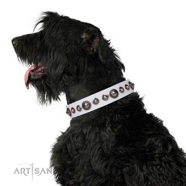 Amazing studded genuine leather dog collar for walking