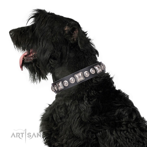 Unusual decorated natural leather dog collar for basic training