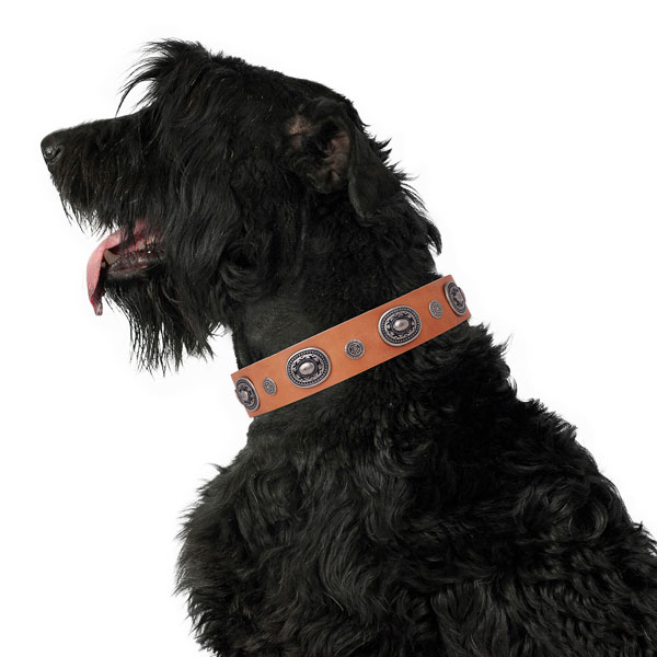 Leather dog collar with reliable buckle and D-ring for comfy wearing
