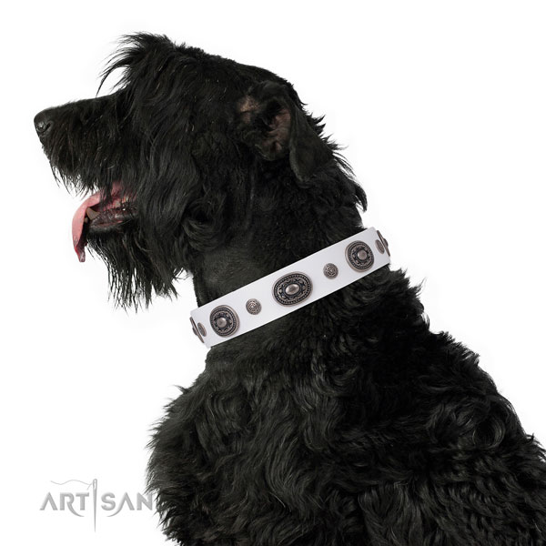 Leather dog collar with rust resistant buckle and D-ring for comfortable wearing