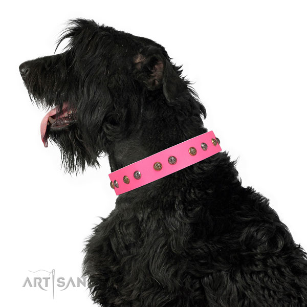 Handy use adorned dog collar made of quality leather