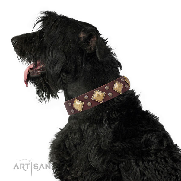 Walking adorned dog collar made of durable genuine leather