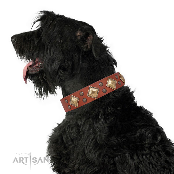 Basic training studded dog collar made of best quality natural leather