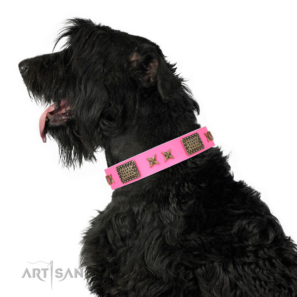 Incredible studs on easy wearing full grain natural leather dog collar