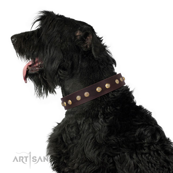 Stylish design studs on easy wearing full grain leather dog collar