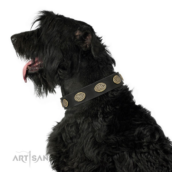 Stylish design studs on easy wearing full grain genuine leather dog collar