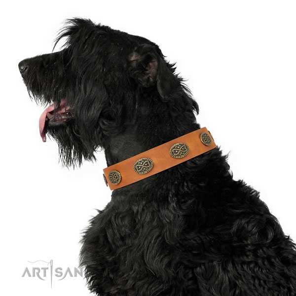 Remarkable adornments on basic training natural genuine leather dog collar