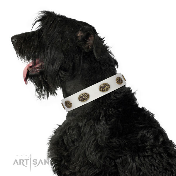 Significant studs on comfortable wearing genuine leather dog collar
