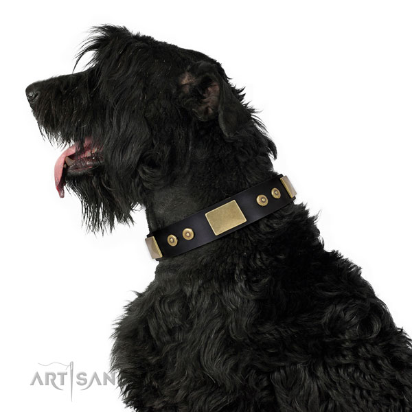 Reliable easy wearing dog collar of genuine leather