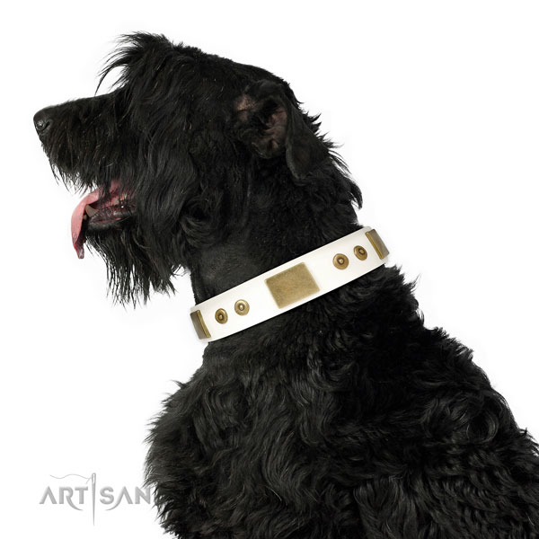 Strong easy wearing dog collar of natural leather