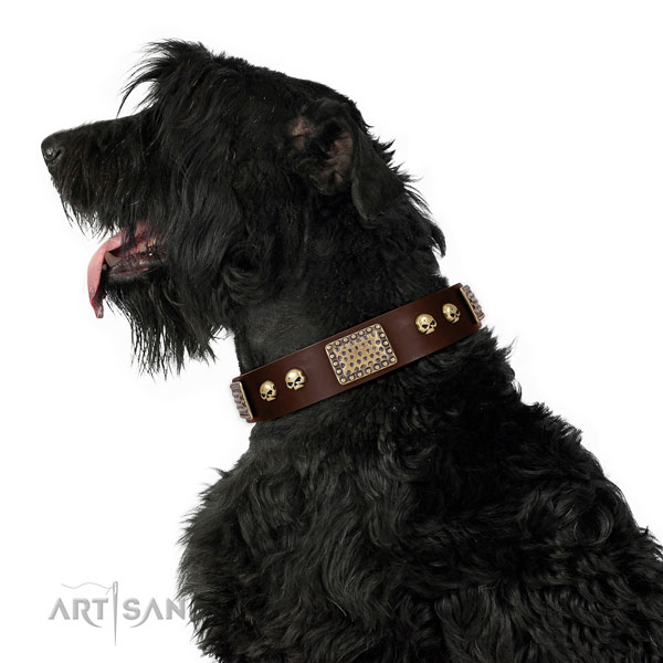 Rust resistant hardware on full grain natural leather dog collar for stylish walking