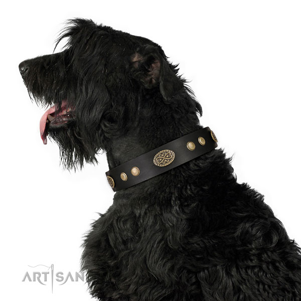 Corrosion proof buckle on leather dog collar for fancy walking