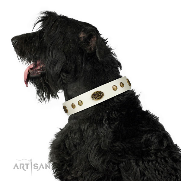 Rust-proof fittings on natural leather dog collar for everyday use