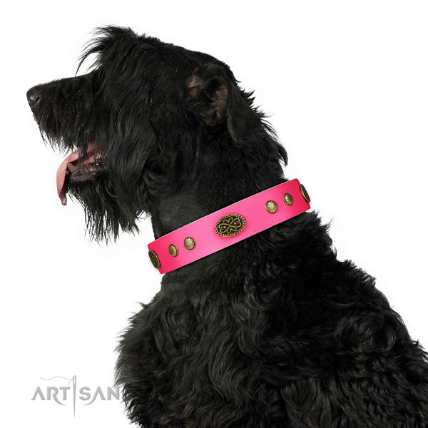 Rust-proof D-ring on genuine leather dog collar for daily walking