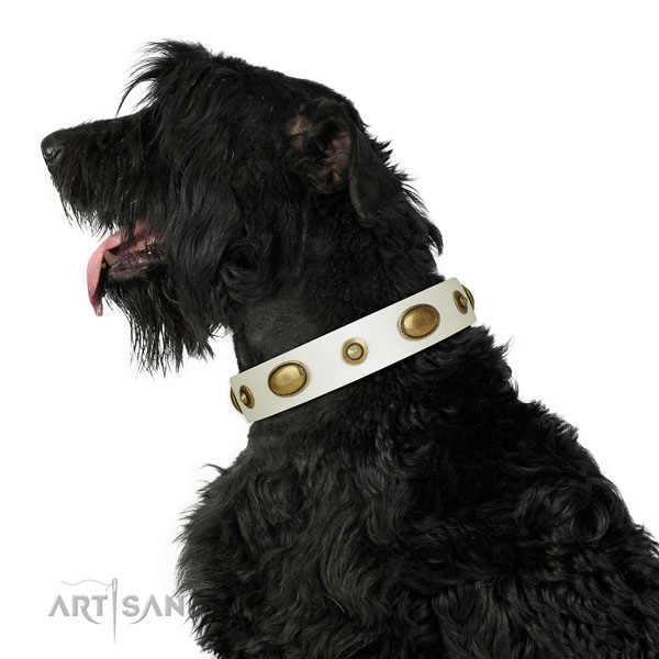 Everyday use dog collar of leather with extraordinary embellishments