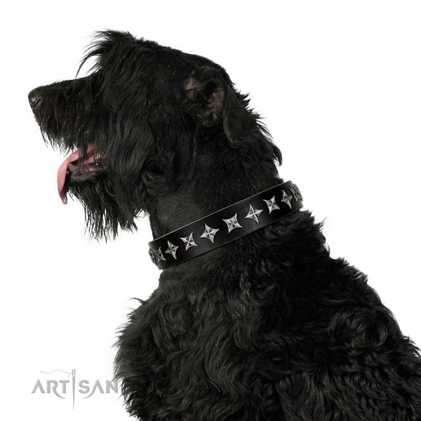 Comfortable wearing adorned dog collar of reliable genuine leather
