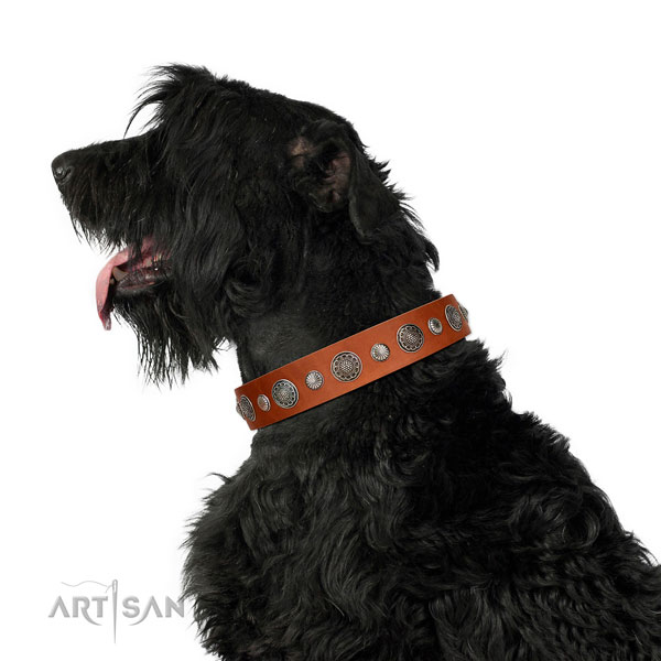 Inimitable full grain genuine leather dog collar with rust resistant fittings