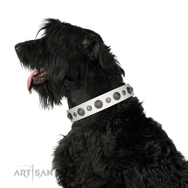 Top quality Full grain natural leather dog collar with rust-proof D-ring