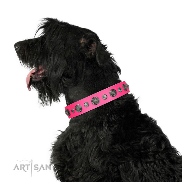 Embellished natural leather dog collar with rust-proof buckle