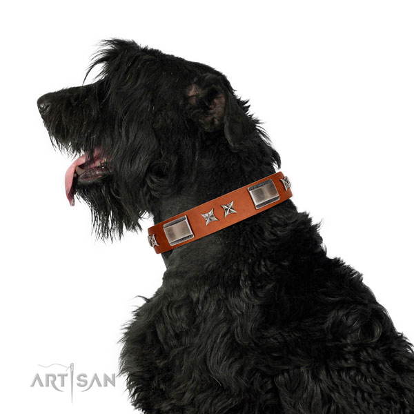 Daily use gentle to touch full grain natural leather dog collar with embellishments