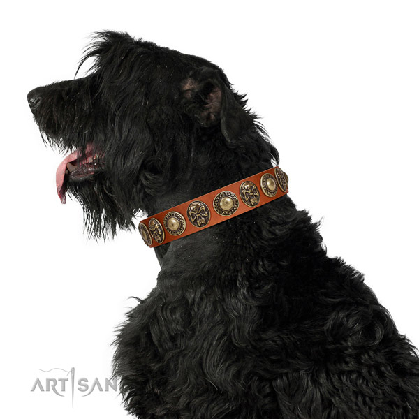 Fine quality natural leather collar for your attractive doggie
