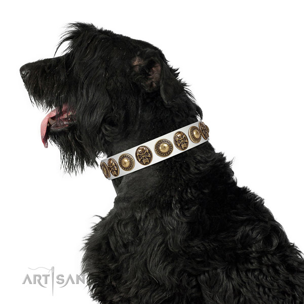 Embellished full grain natural leather collar for your stylish pet