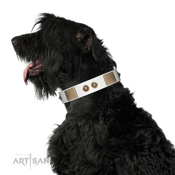 Comfy wearing dog collar of natural leather with inimitable decorations