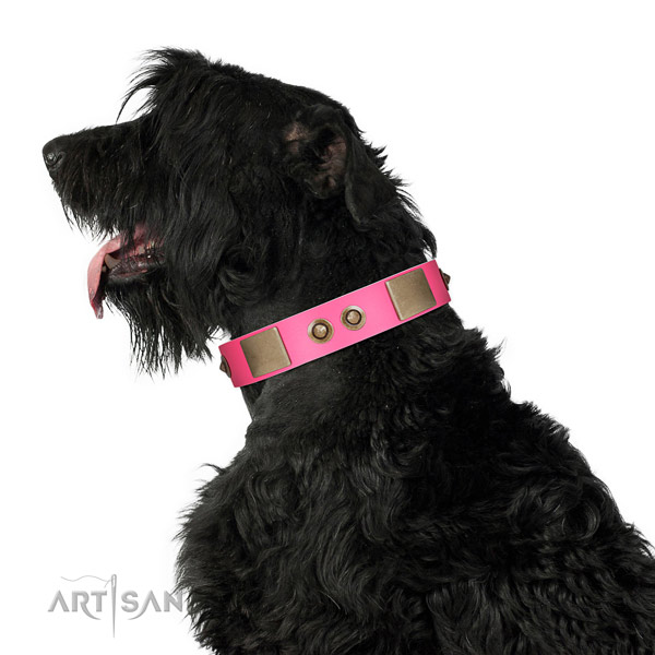 Comfy wearing dog collar of natural leather with trendy decorations