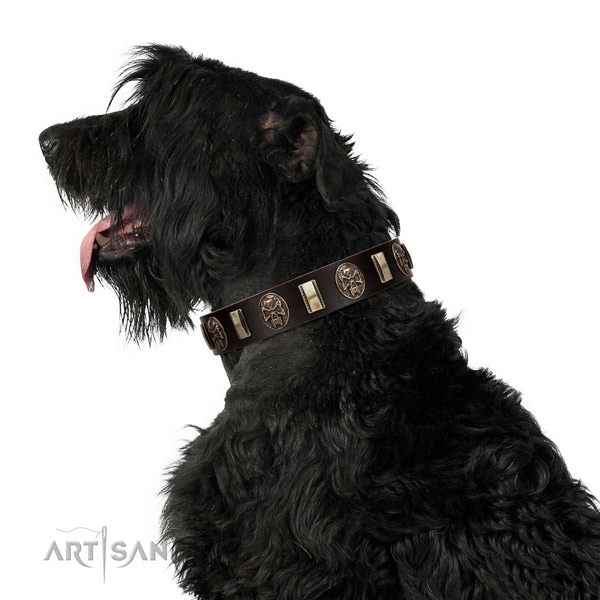 Leather collar with decorations for your beautiful dog