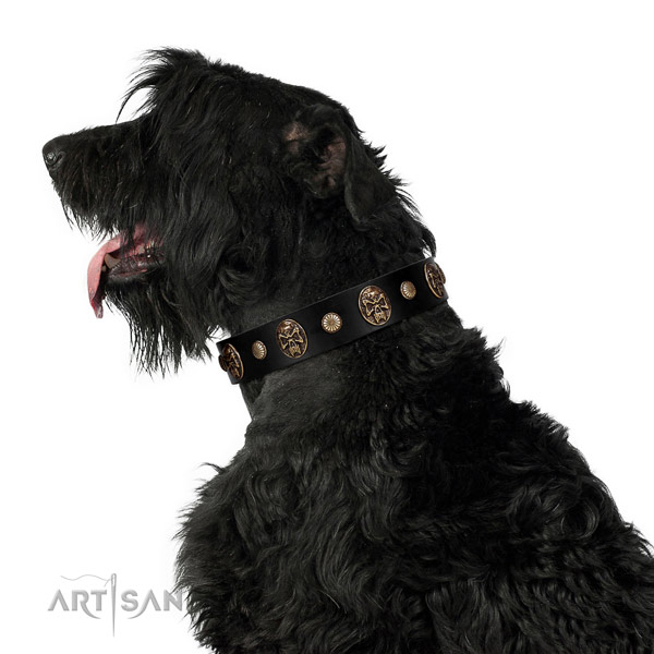 Handmade dog collar created for your handsome doggie