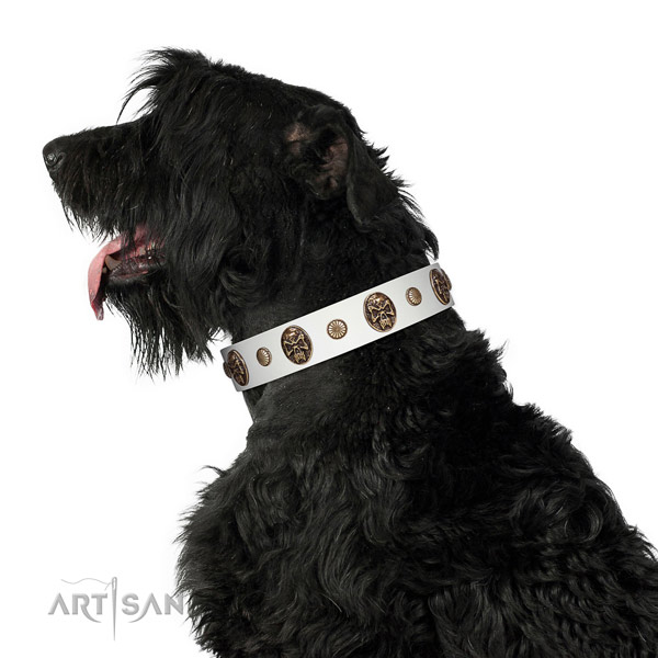 Best quality dog collar made for your handsome pet