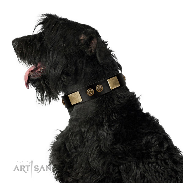 Everyday walking dog collar of natural leather with exquisite decorations