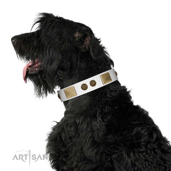 Impressive dog collar crafted for your impressive four-legged friend