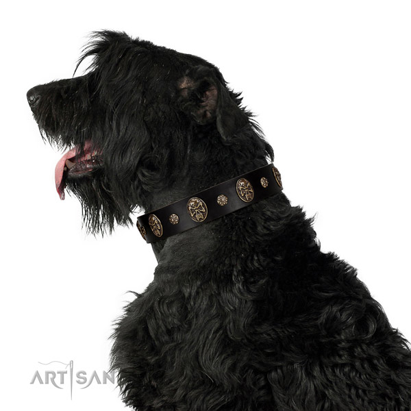 Comfy wearing dog collar of natural leather with inimitable adornments