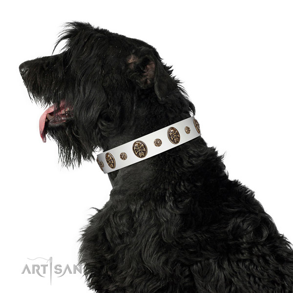 Handy use dog collar of genuine leather with unique embellishments