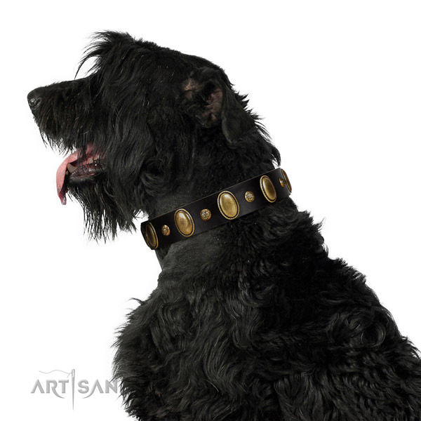 Full grain natural leather dog collar of flexible material with fashionable decorations