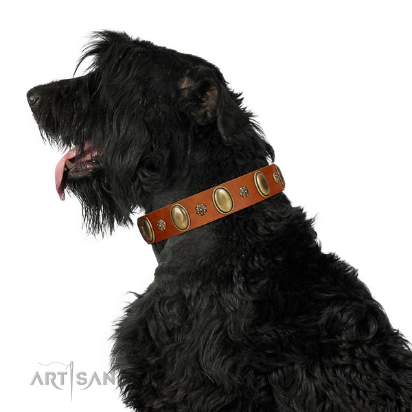 Everyday use quality genuine leather dog collar with decorations