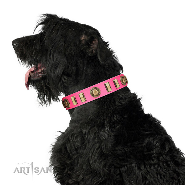 Convenient full grain leather dog collar with corrosion proof fittings