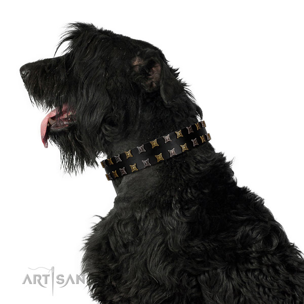 Top notch natural leather dog collar with embellishments for your canine