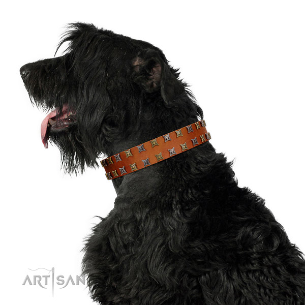 Soft full grain natural leather dog collar with adornments for your doggie