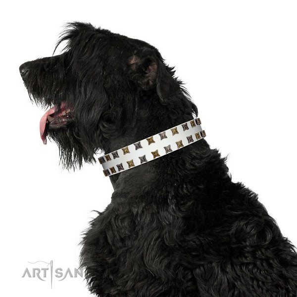 Reliable natural leather dog collar with embellishments for your four-legged friend