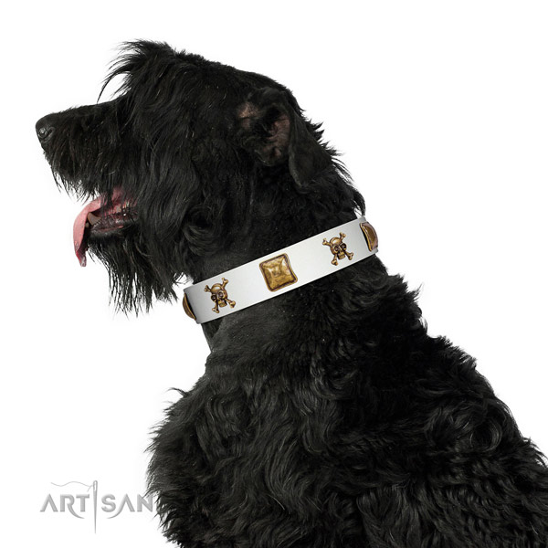 Everyday walking natural leather dog collar with adornments