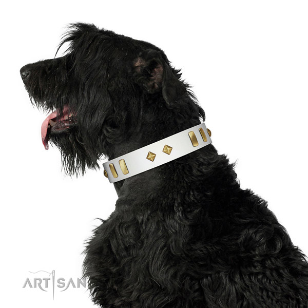 Daily walking high quality full grain genuine leather dog collar with adornments