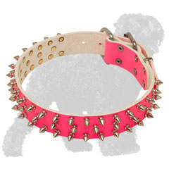 Pink Leather Russian Terrier Collar with Nickel Spikes