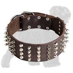 Studded and Spiked Walking Wide Leather Russian Terrier Collar