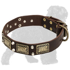 Black Russian Terrier Collar with Brass Plates and Nickel Pyramids